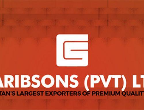 Garibsons Corporate Profile (2020)