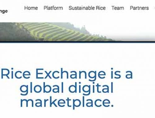 Garibsons Featured on Rice Exchange